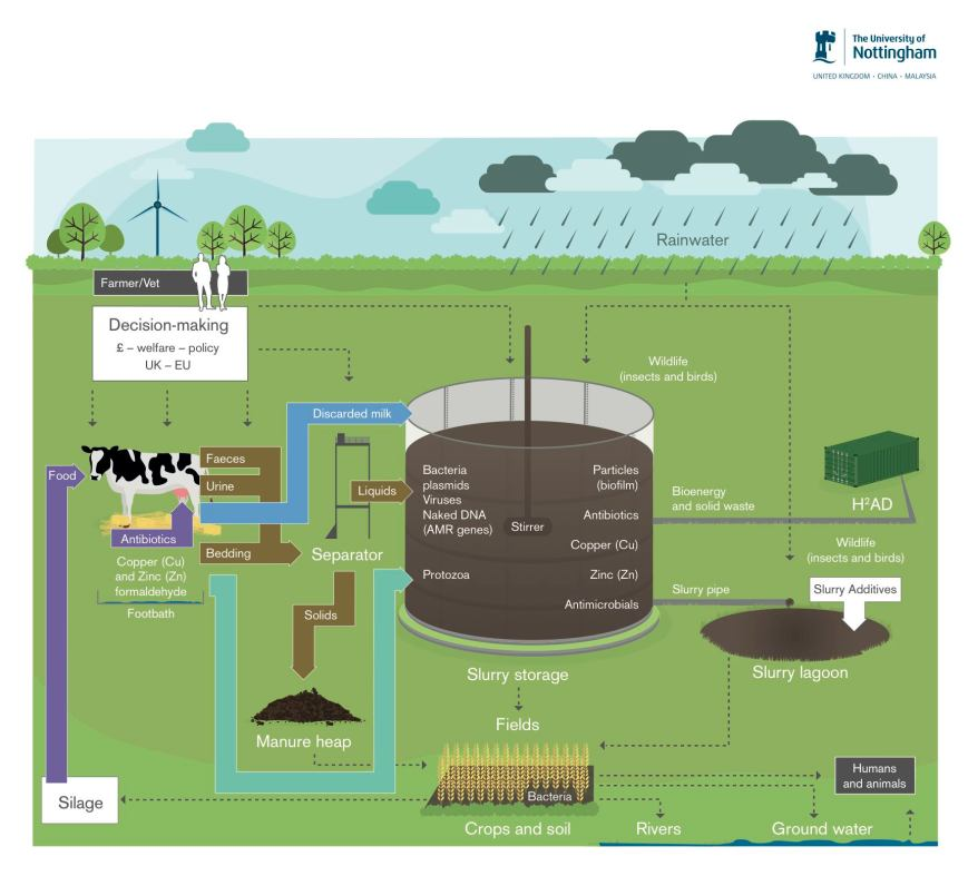 281015_RM_0018_Slurry_Infographic_smaller